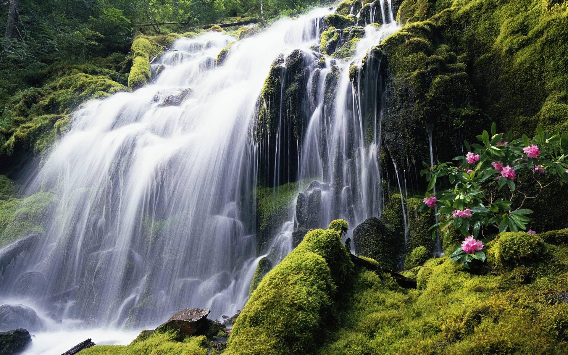 Chutes d'eau,cascades