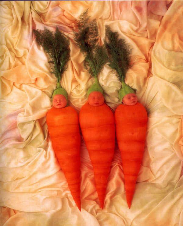 Поздравление на свадьбу вот тебе морковка 683