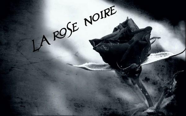 C Est Comme Ca Rose Noir